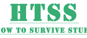 How to Survive Stuff - LOGO